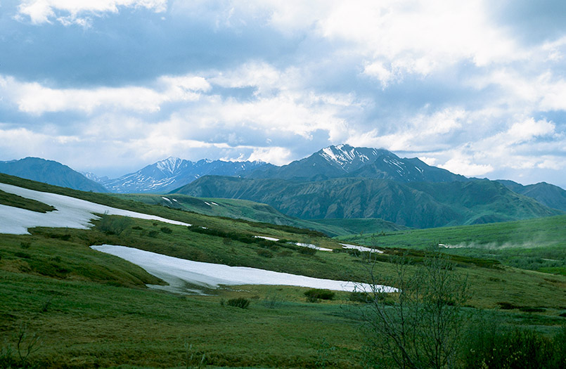 Wildes Alaska: der Denali-Nationalpark