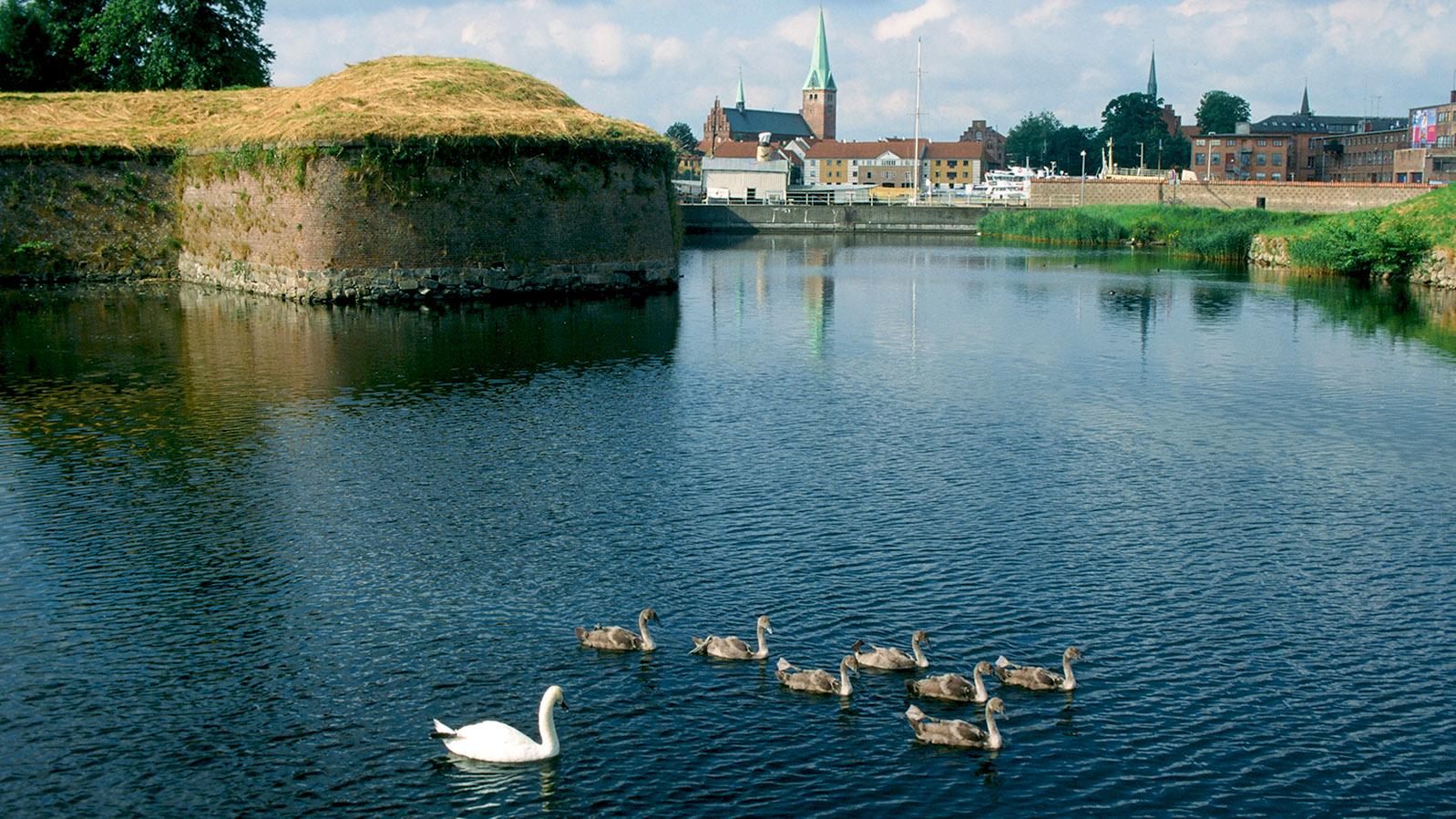 Seeland, Helsingør: Blick von Schloss Kronborg auf die Stadt. Foto: Hilke Maunder