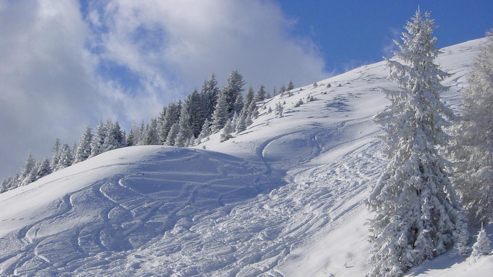 Warth: Tiefschnee und blauer Himmel... ein Traum! Foto Hilke Maunder