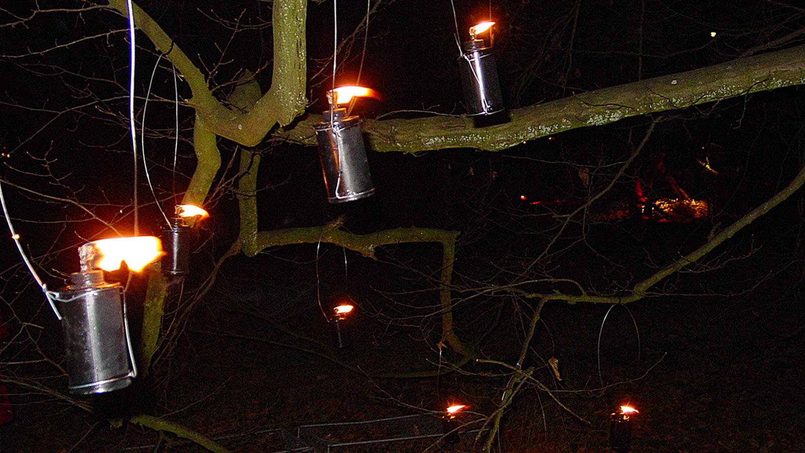 Weihnachten bringt Licht ins Dunkel - auch in der Natur, wie hier bei Frederiksdal. Foto: Hilke Maunder