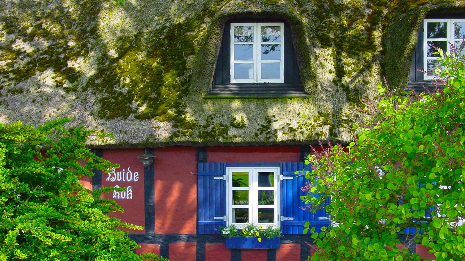 Djursland: Restaurant Hvide Kok (Weißer Hahn) von Drammelstrup. Foto: Hilke Maunder
