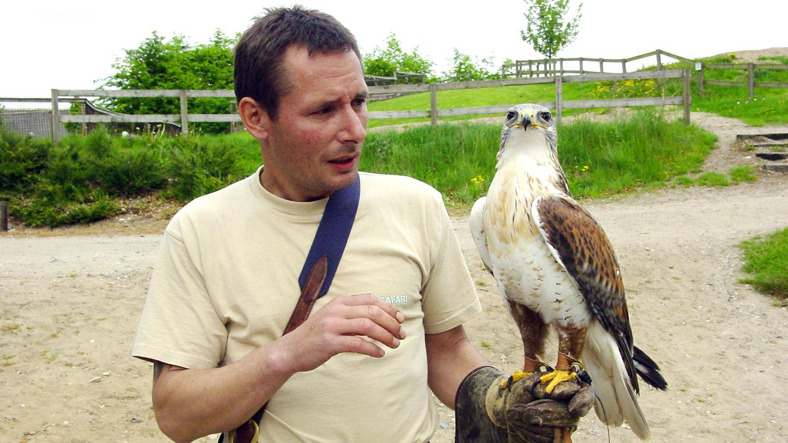 Djursland: Ebeltoft Zoo: Ein Falkner präsentiert einen Raubvogel.Foto: Hilke Maunder