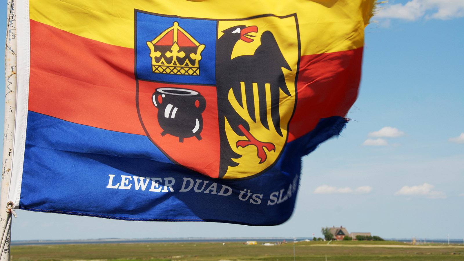 Die Flagge der Friesen weht auch auf Hooge. Foto: Hilke Maunder