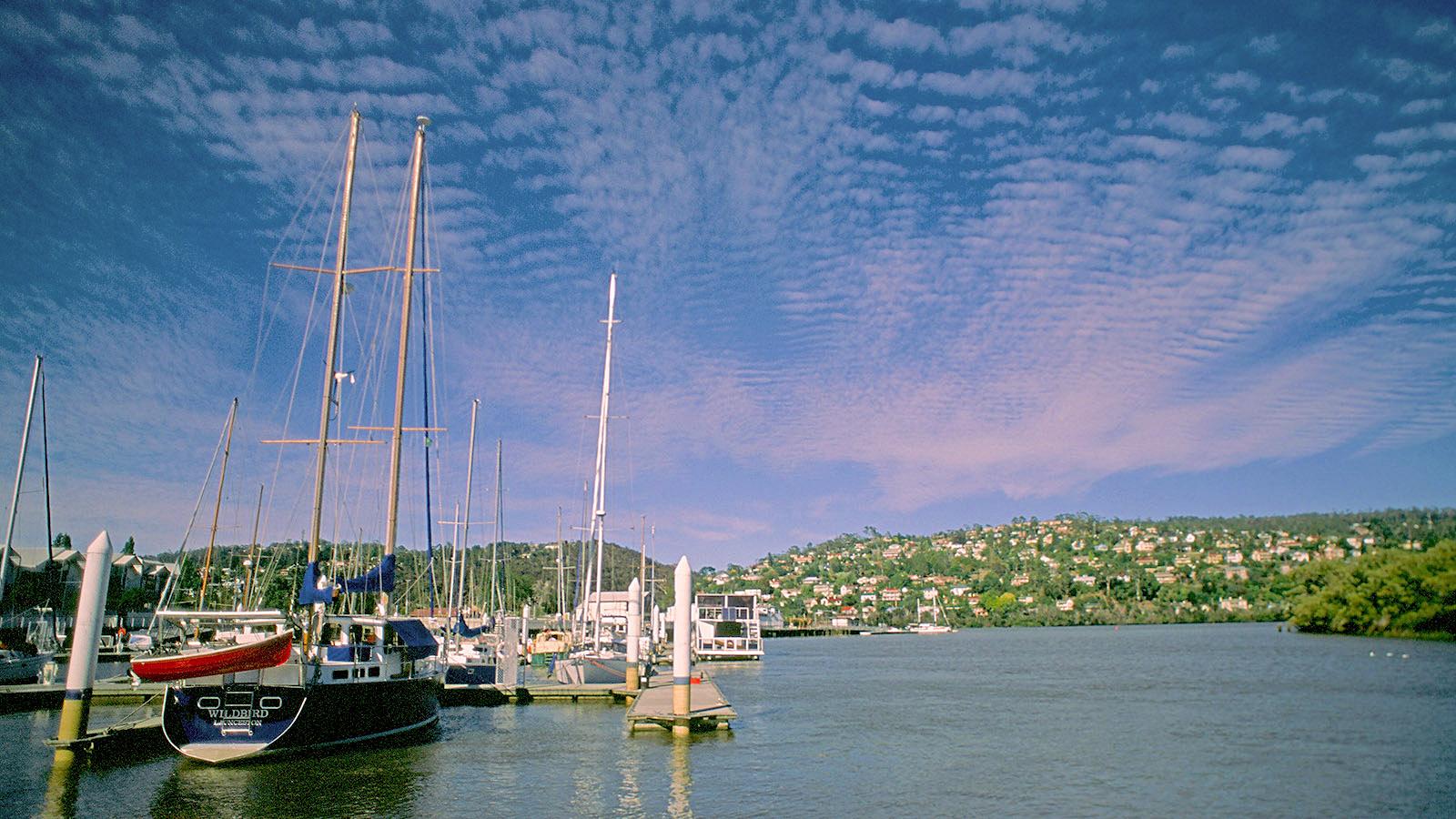 Tasmanien, Launceston: die Marina am Tamar River. Foto: Hilke Maunder