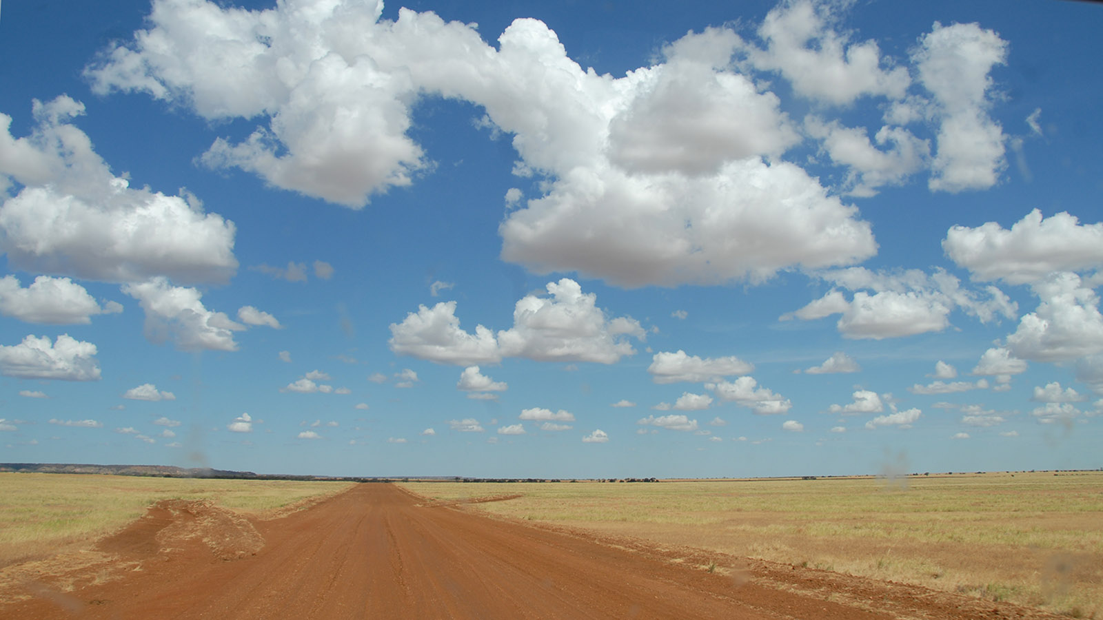 Rote Erde, gelbes Gras, blauer Himmel, weiter Horizont: unterwegs im Channel Country. Foto: Hilke Maunder