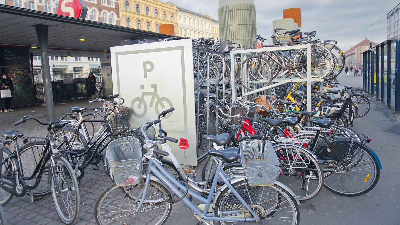 Grünes Kopenhagen: Radstellplätze am Nørreport. Foto: Hilke Maunder