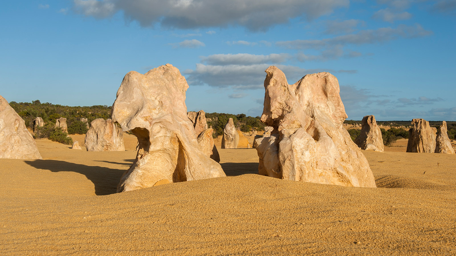 Nachmittags am schönsten: die Pinnacles im Nambung National Park. Foto: Hilke Maunder