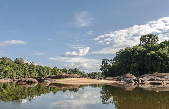 Fließende Magie: Suriname River