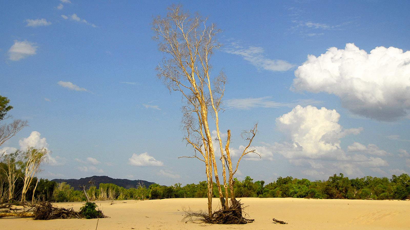 Unterwegs im Arnhem Land. Foto: Hilke Maunder