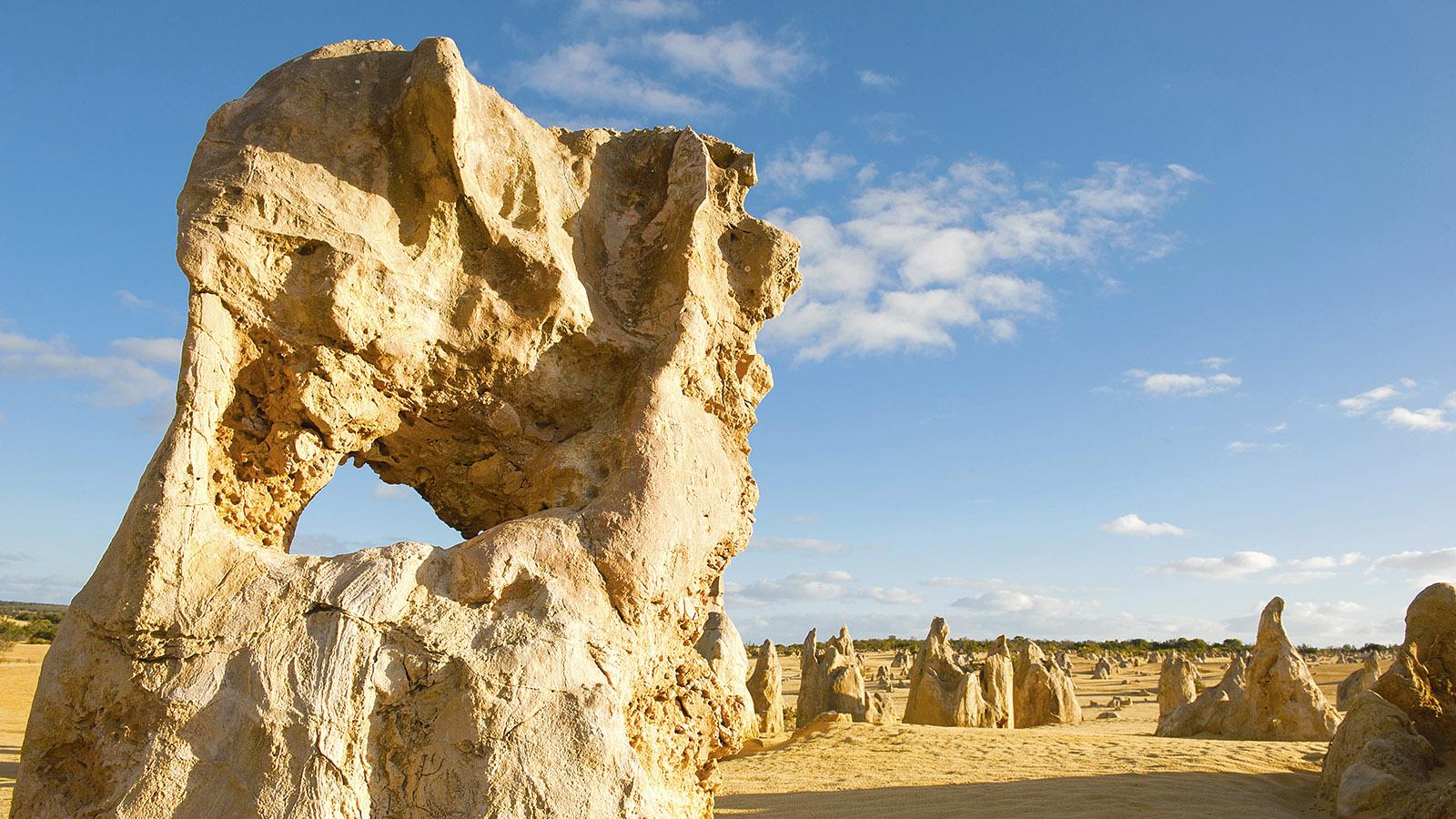 Eine Wüste voller Kalksteinnadeln: die Pinnacles. Foto: Hilke Maunder