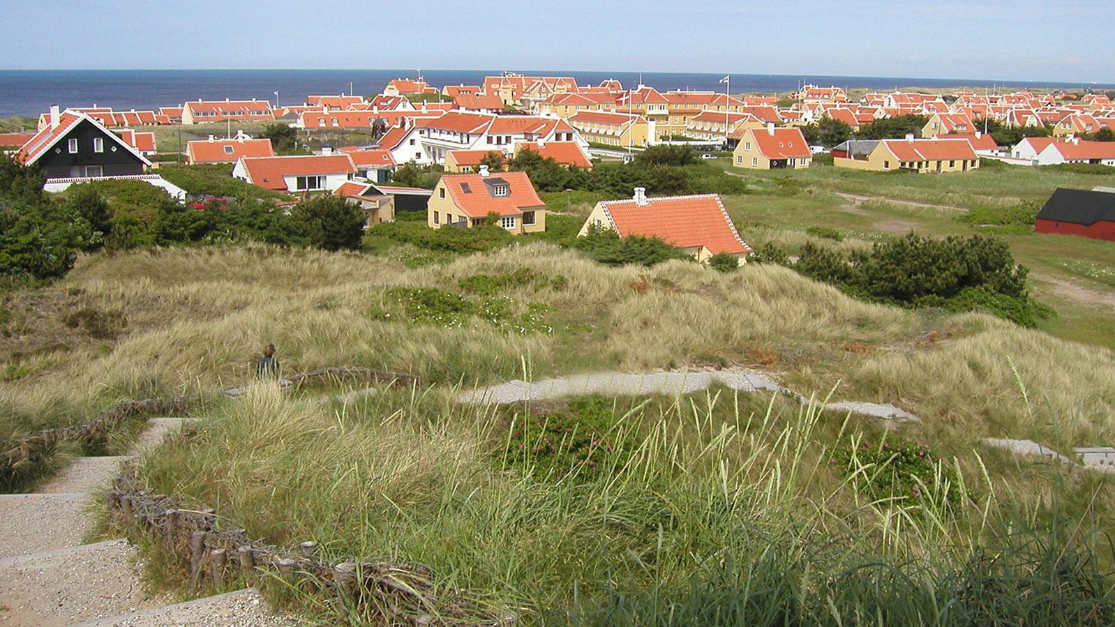Blick auf Gammel Skagen von den Dünen. Foto: Hilke Maunder