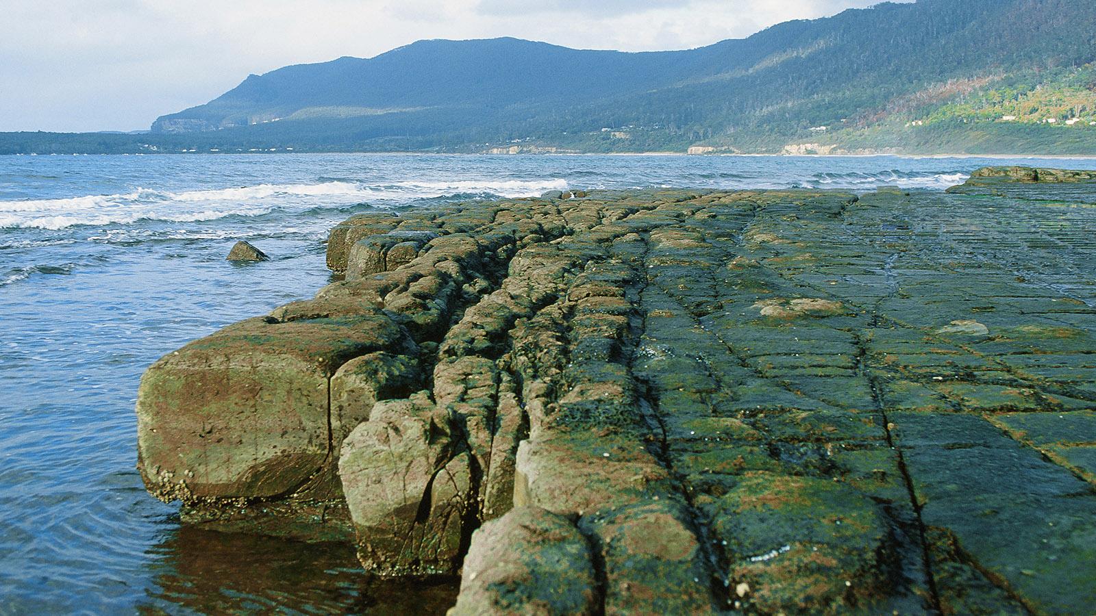 Geologisches Unikum bei Port Arthur: das Tesselated Pavement, ein Bürgersteig der Natur. Foto: Hilke M