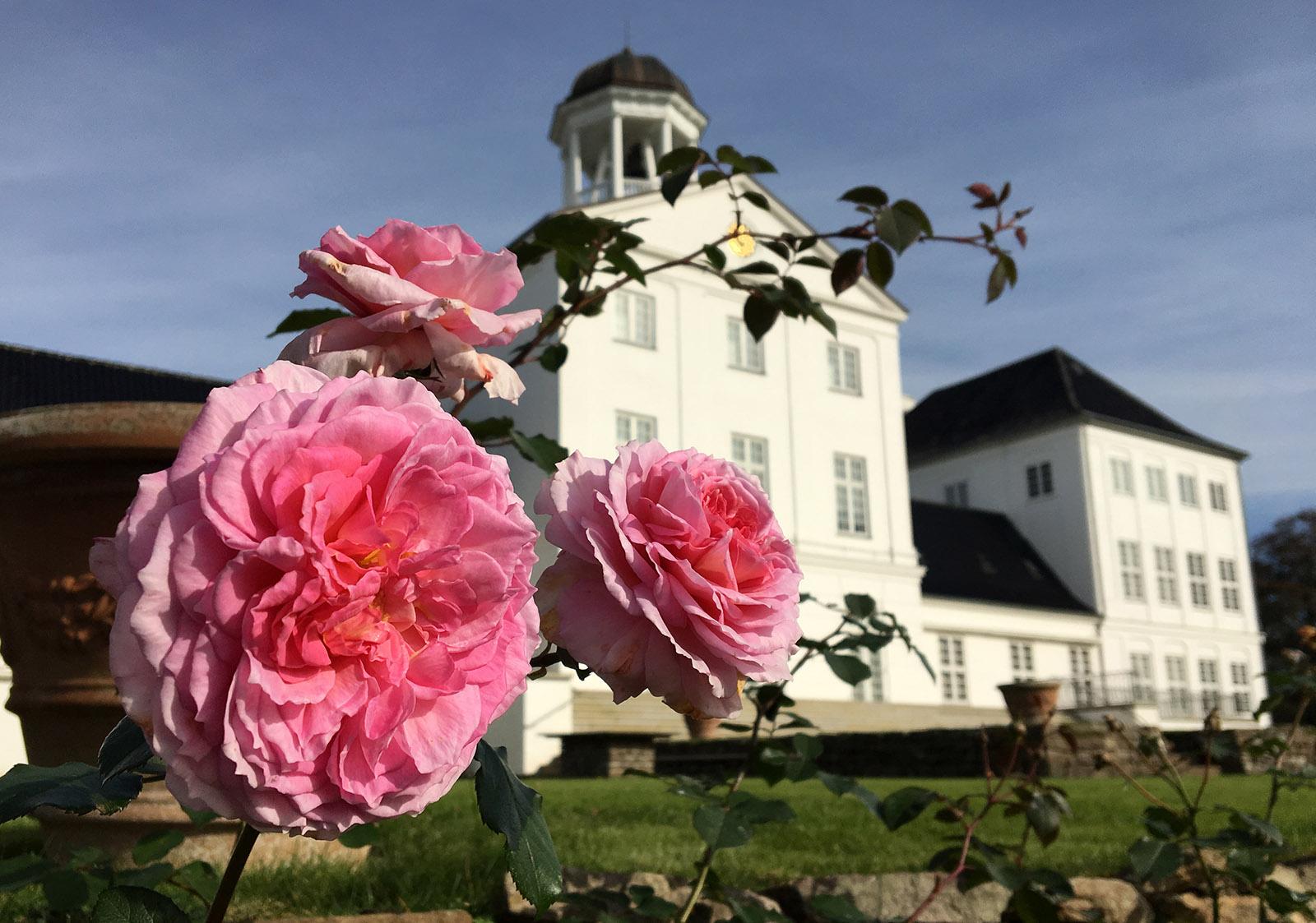 Gråsten Slot, Sommerresidenz der dänischen Königin. Foto: Hilke Maunder