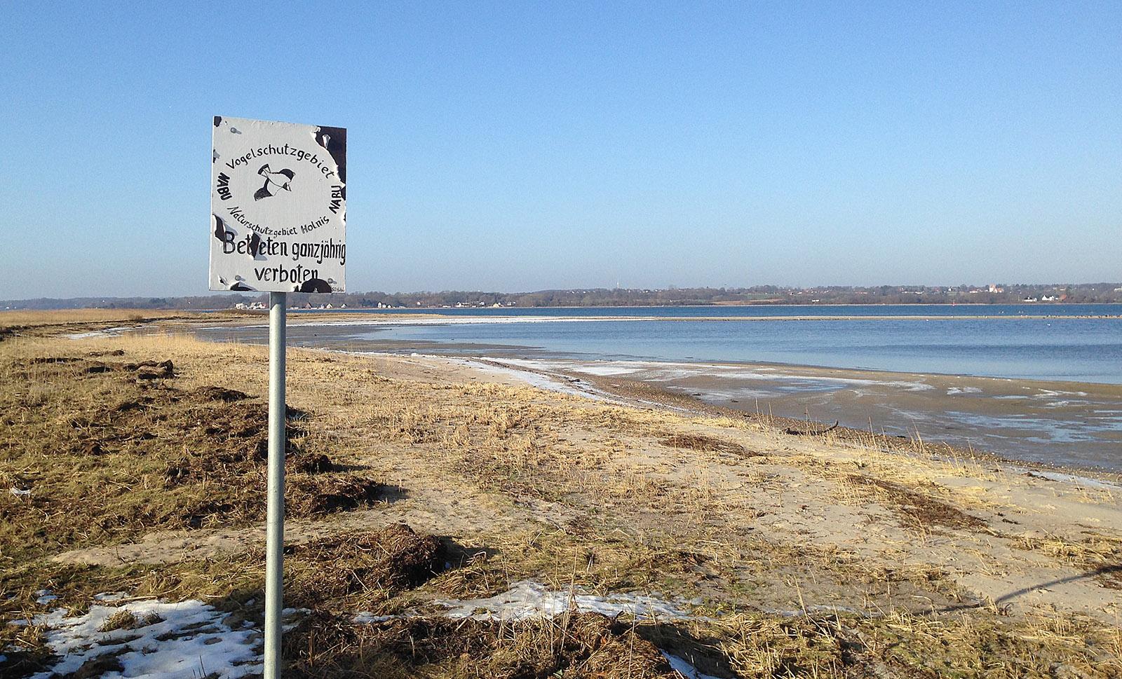 Winter auf der Halbinsel Holnis. Foto: Hilke Maunder