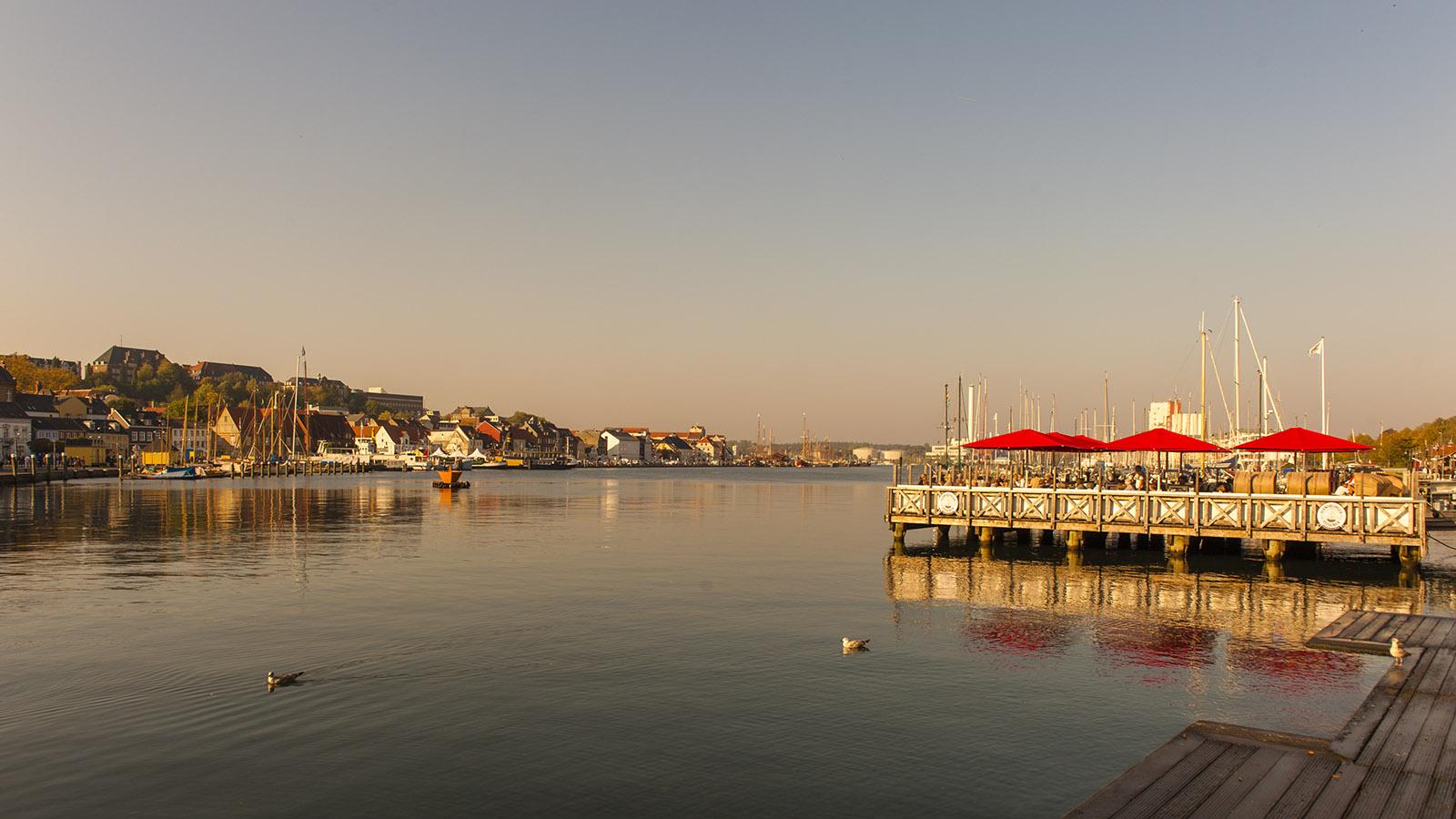 An der Flensburger Förde. Foto: Hilke Maunder