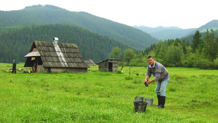 Hohe Tatra bei Witow: In den Hütten wird geräucherter Schafskäse hergestellt. Foto: Hilke Maunder
