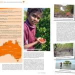 Mudcrabbing mit Brian - Hilke Maunder stellt in 360° Australien Erlebnisse mit den Aborigines vor.
