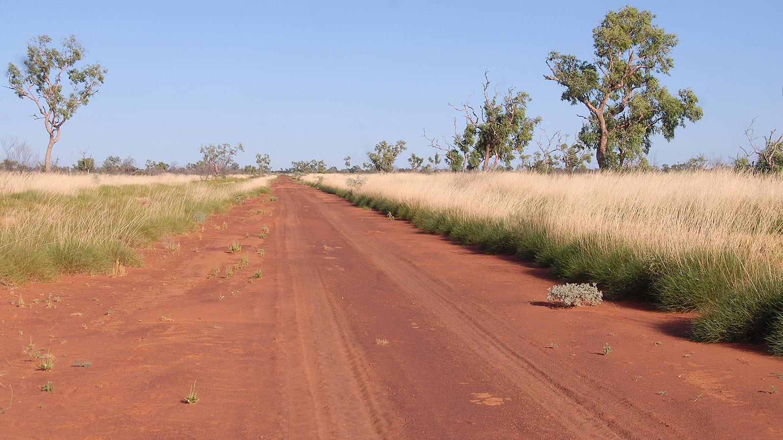 Offroad im Northern Territory heißt meistens: roter Sand, mal fest, mal weich... Foto: Hilke Maunder