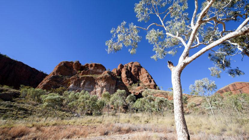 Startpunkt der Wanderung durch die Echidna Chasm in der Bungle-Bungl-Range der Kimberley. Foto: Hilke Maunder