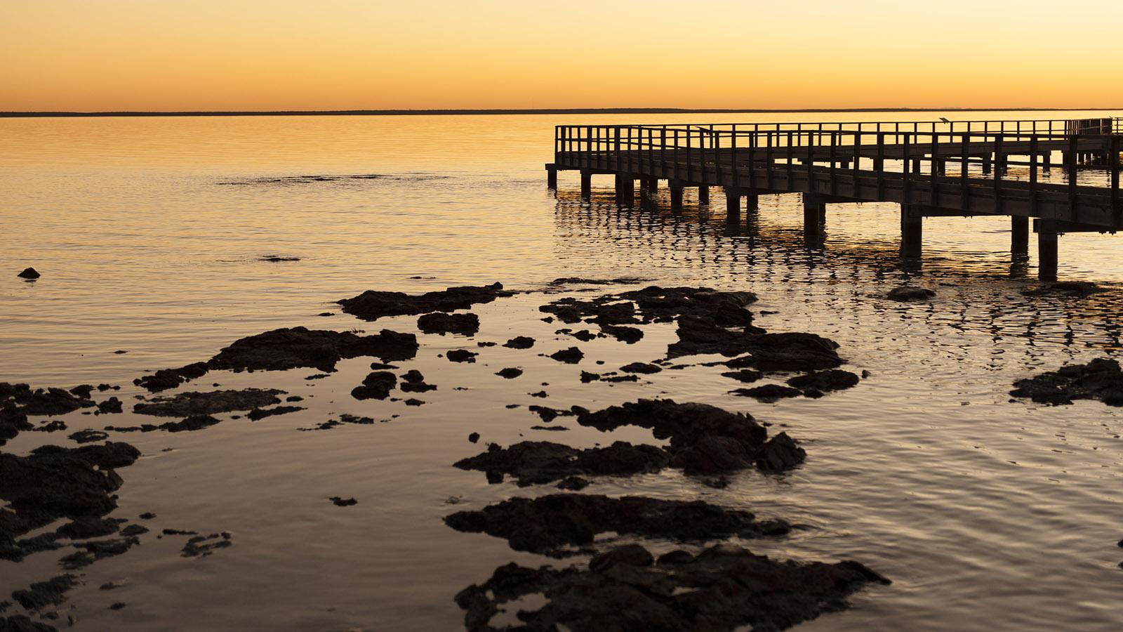 Coral Coast: Vom Boardwalk aus könnt ihr die Stromatolithen von Hamelin Pool perfekt entdecken. Und tolle Sunsets genießen! Foto: Hilke Maunder