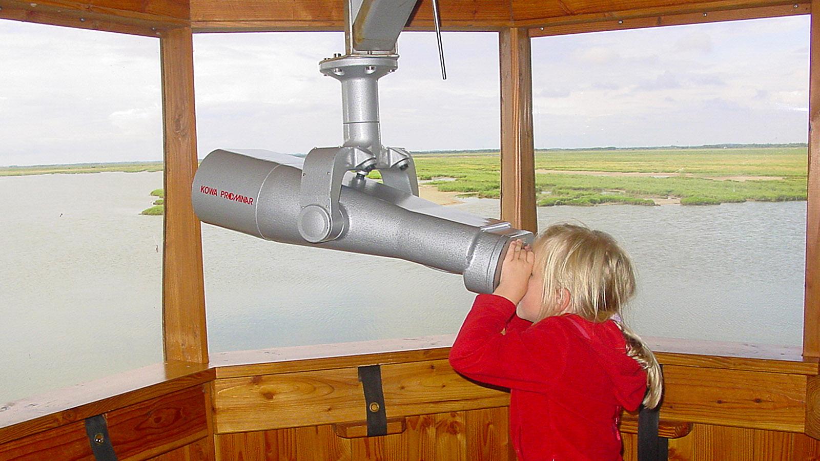 Umgebung Thy: m Vogelbeobachtungshaus von Vejlerne am Limfjord. Foto: HIlke Maunder