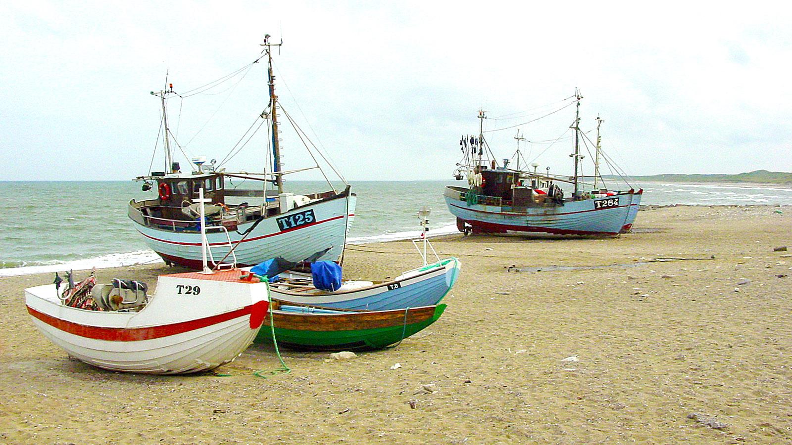 Am Strand von Norre Vorupør. Foto: Hilke Maunder
