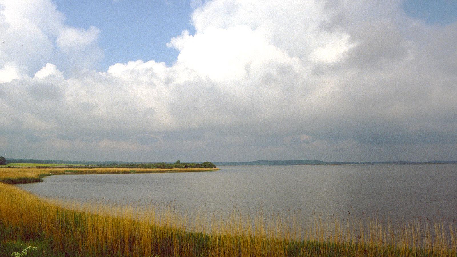 Der Dassower See. Hier beginnt, von Lübeck kommend, der Klützer Winkel. Foto: Hilke Maunde