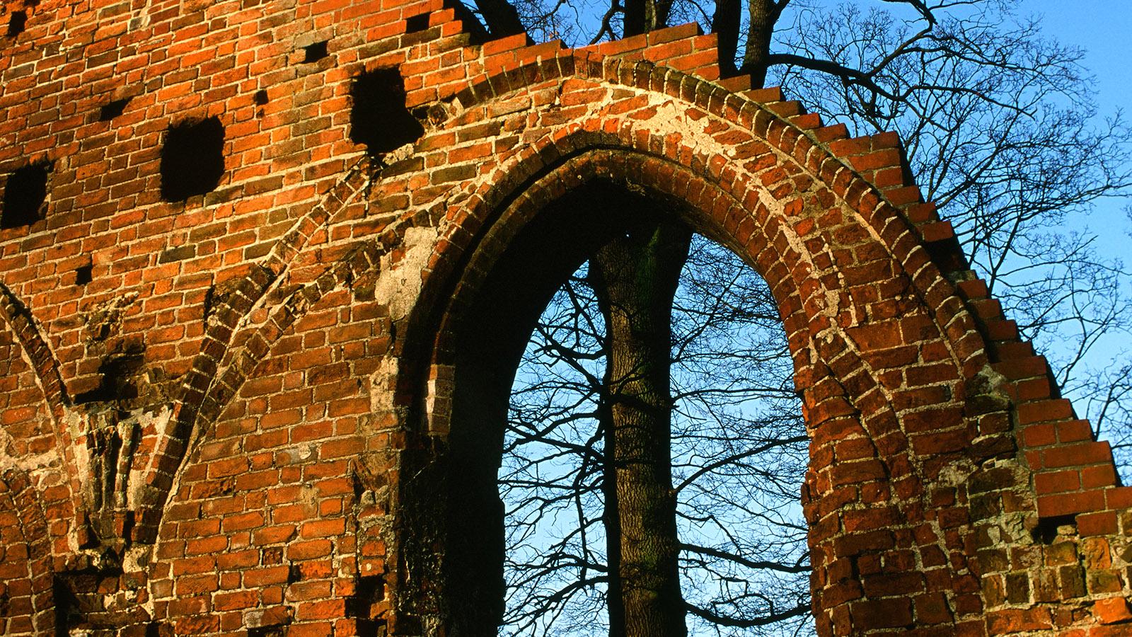 Nur wenige Details der Klosterruine Eldena sind erhalten - doch sie bezeugen die hohe Baukunst der norddeutschen Backsteingotik. Foto: Hilke Maunder