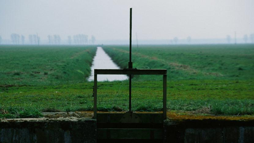 Bei Friedrichsmoor: Feld an der Lewitz. Foto: Hilke Maunder