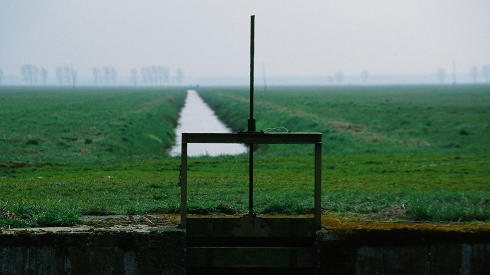 Wildes Mecklenburg. Bei Friedrichsmoor: Feld an der Lewitz. Foto: Hilke Maunder