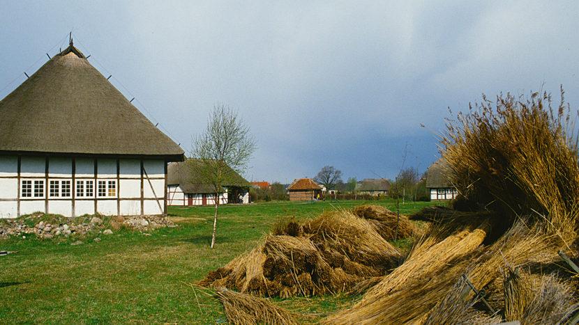 Hält bäuerliches Erbe lebendig: das Freilichtmuseum von Klockenhagen. Foto: Hilke Maunder