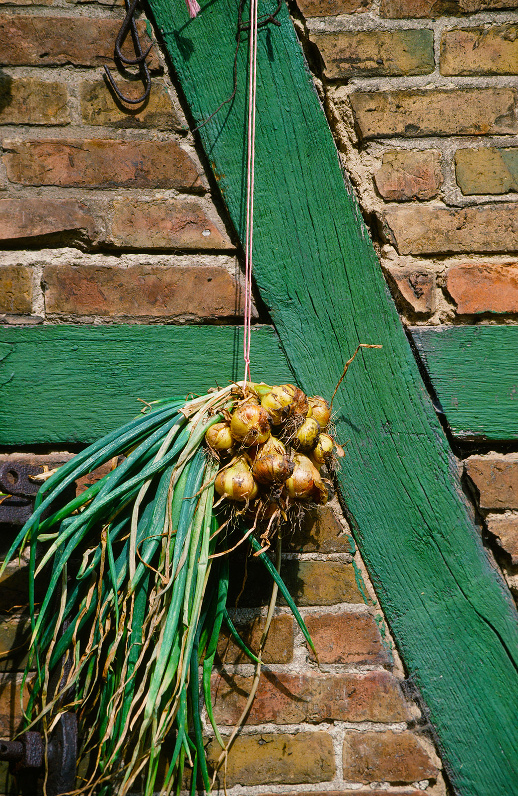 Fachwerk und Zwiebeln. Foto: Hilke Maunder