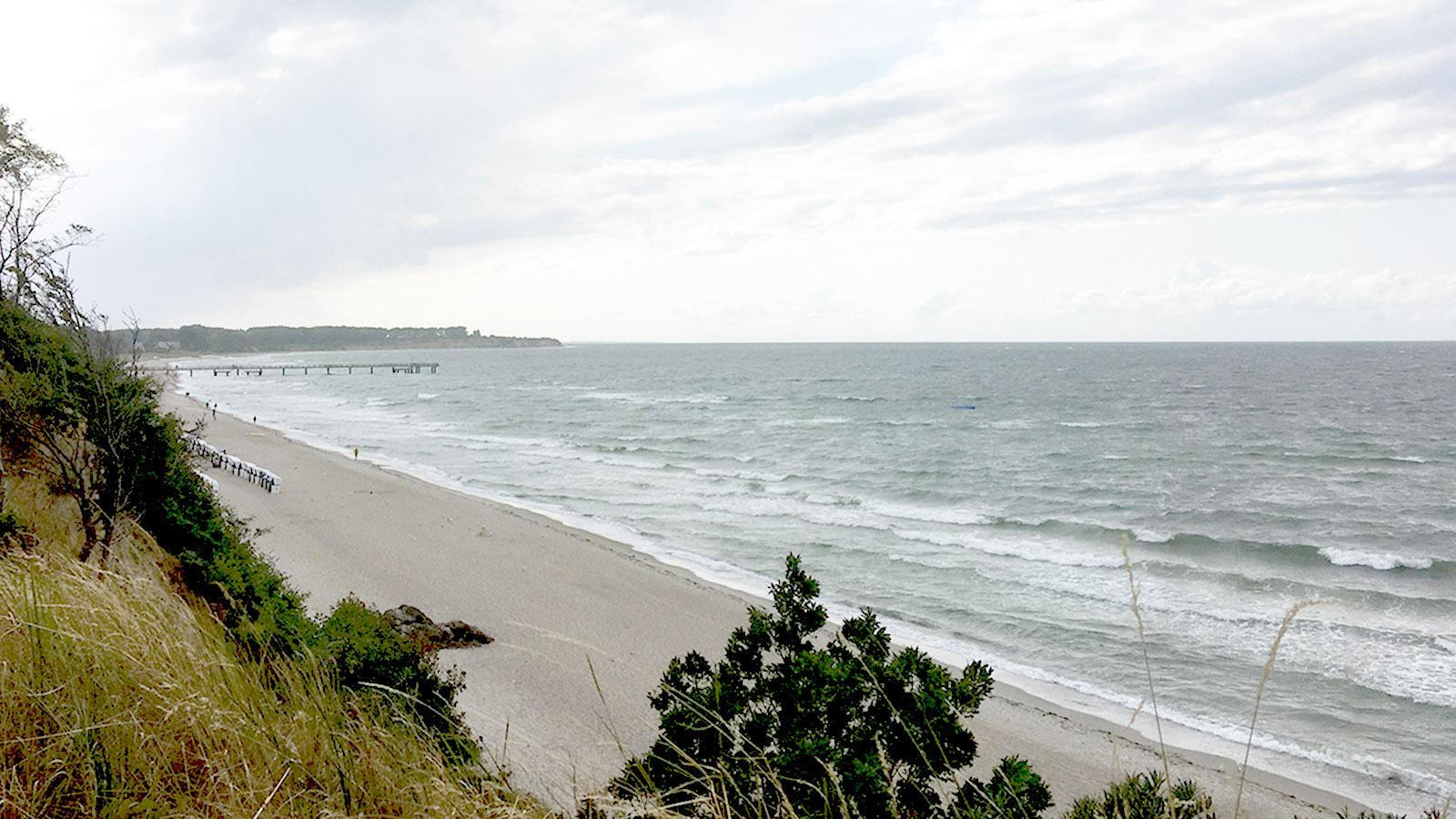 Wildes Mecklenburg: Ende August an der Ostsee bei Rerik. Foto: Hilke Maunder