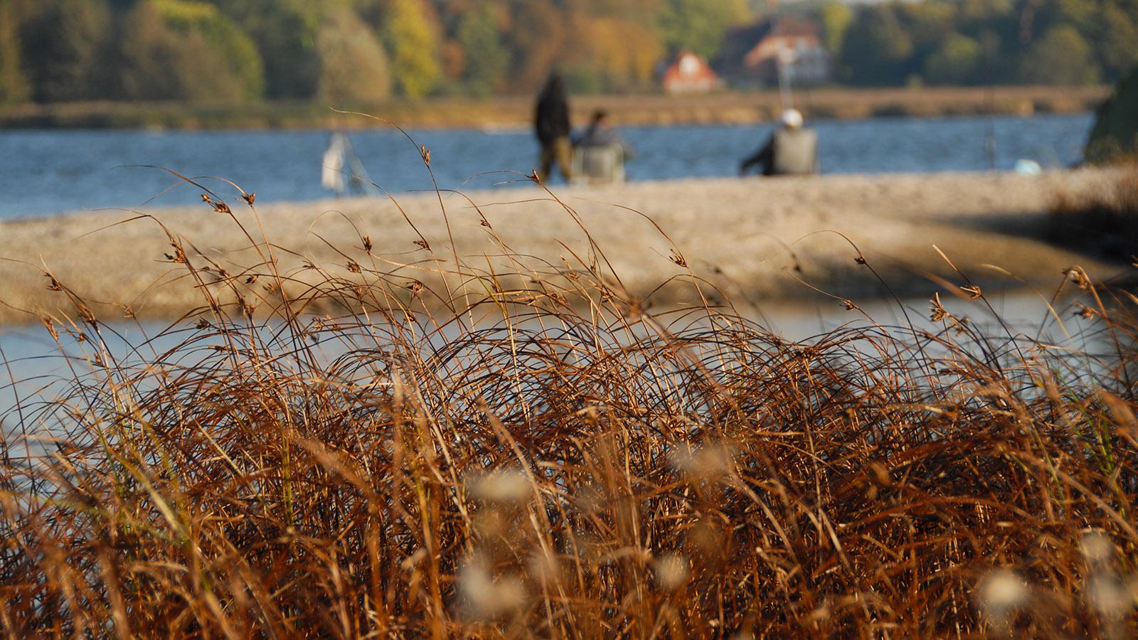 Angler an der Schlei. Foto: Hilke Maunder