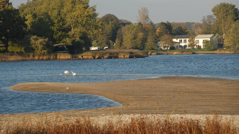 Die Schlei: Natur pur - besonders beim Wasserwandern. Foto: Hilke Maunder