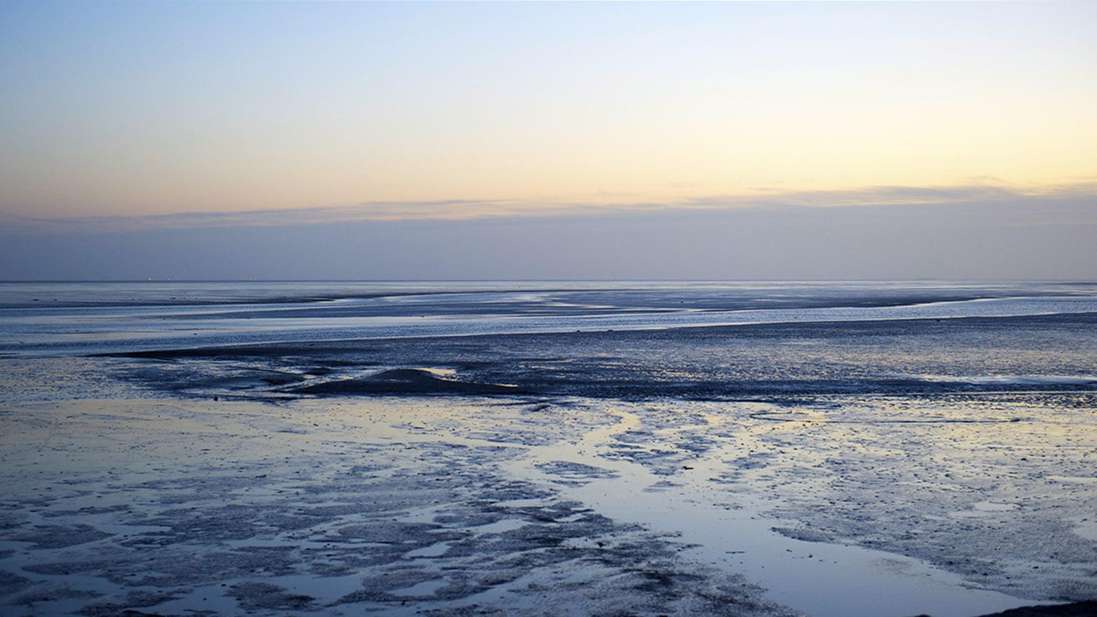 Eiderstedt, Morgens im Wattenmeer. Foto: Hilke Maunder