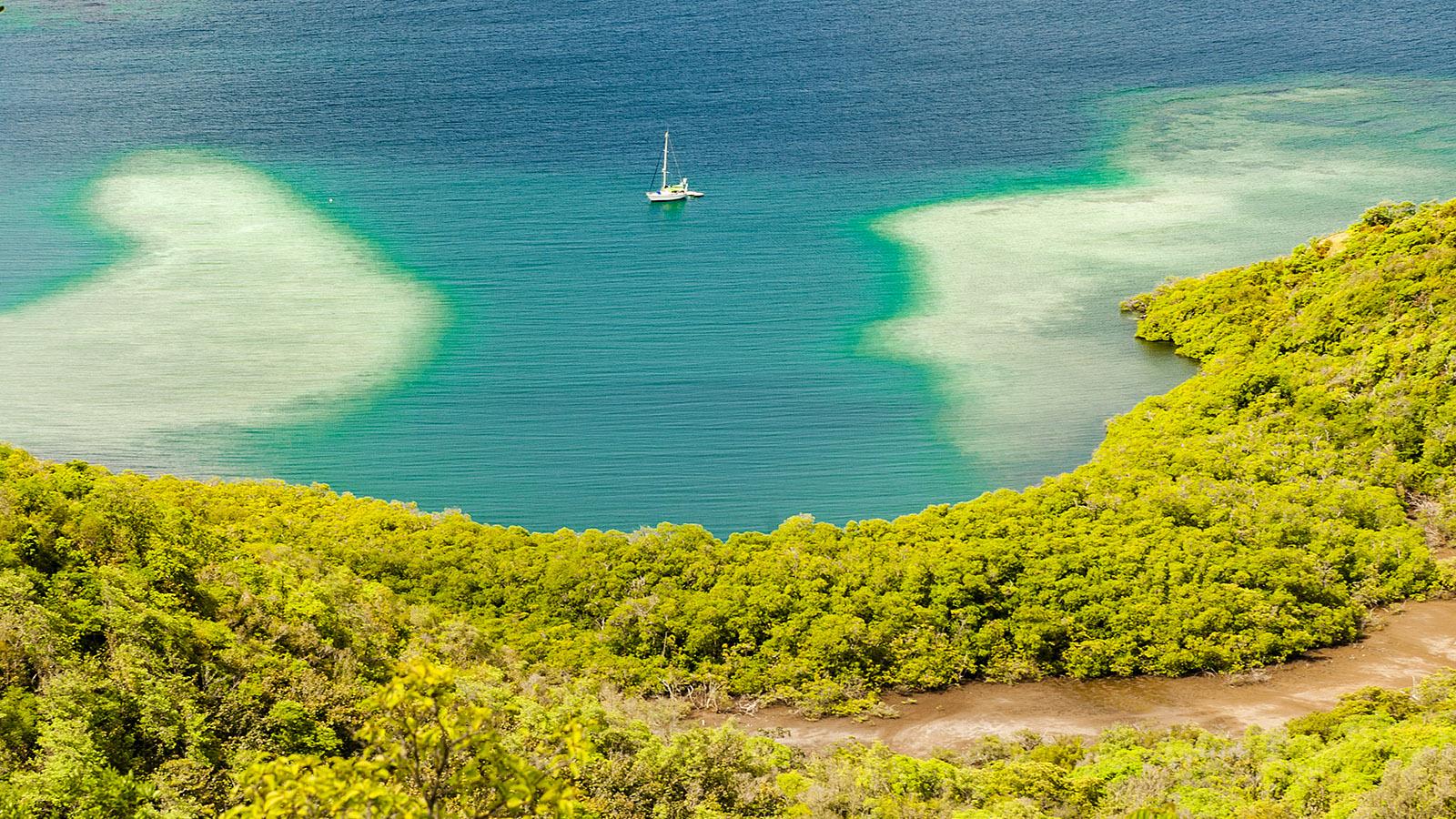 Martinique. Die Küste der Halbinsel Caravelle. Foto: Hilke Maunder