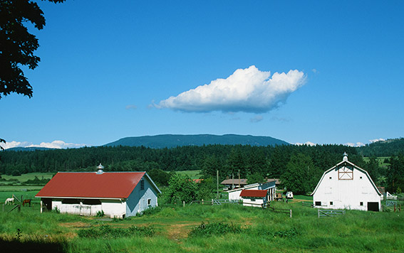 US/Washington State/San Juan Islands/Orcas Island: Crow Valley, Farm