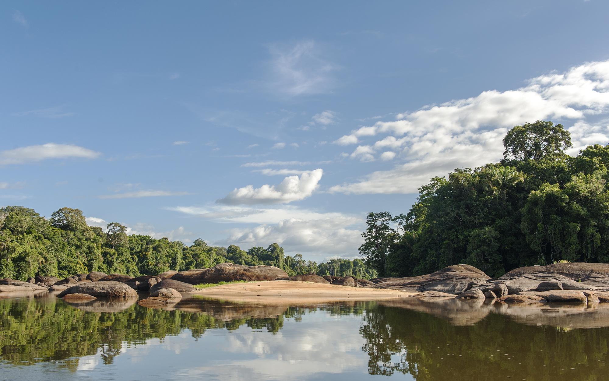 Der Oberlauf des Suriname River