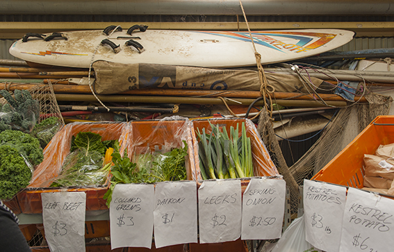 Albany: Der Markt in der Bootshalle
