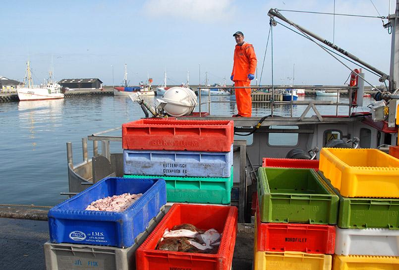 Nexø: Hafen