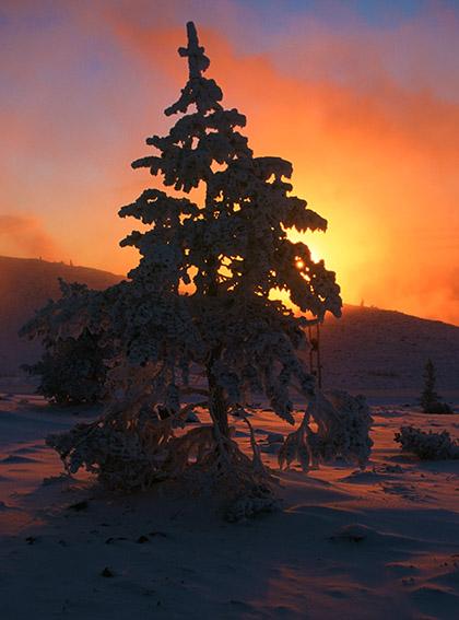 FIN/Lappland/Winter/Levi: Levi-Fjäll