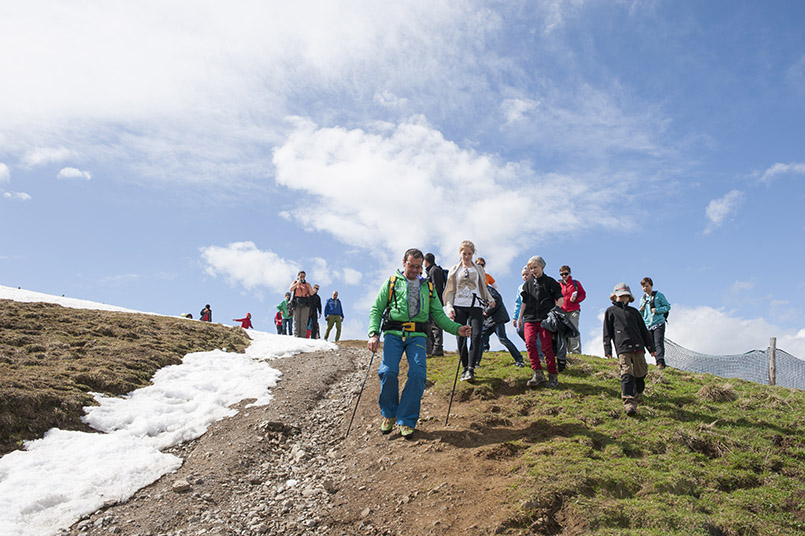 Wandern auf der Hohen Salve bei Hopfgarten in Tirol