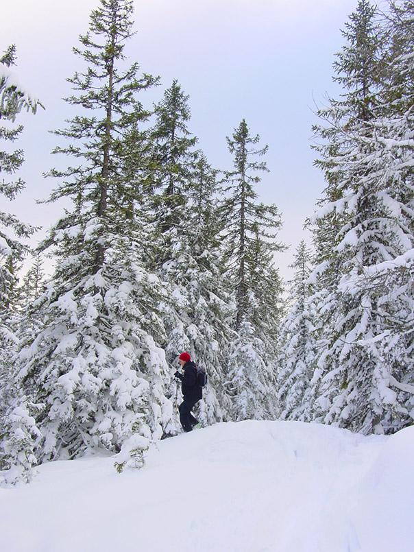 Schweißtreiben: Unterwegs mit Schneeschuhen in Schladming