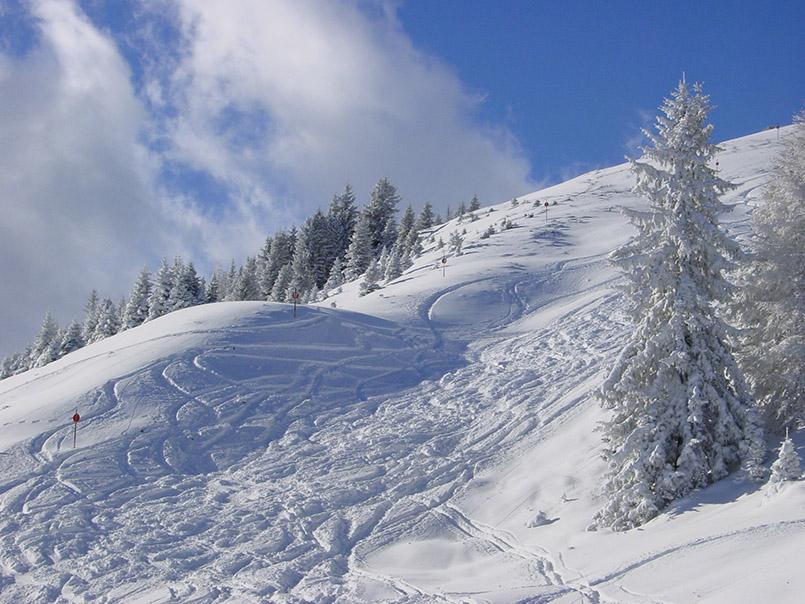 Tux/Skigebiet Eggalm:Tiefschnee neben der Piste am Lattenalmlift.