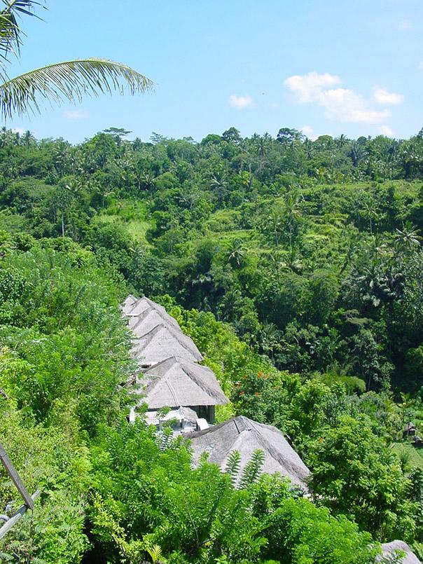 Ubud:Royal Pita Maha Resort: Blick ueber die Anlage.