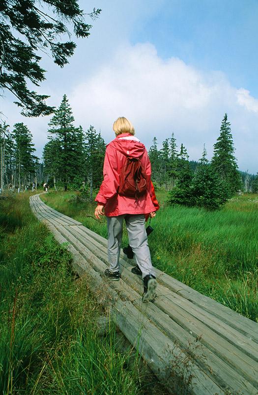 Unterwegs im Riesengebirge: der Wanderweg zur Elbquelle