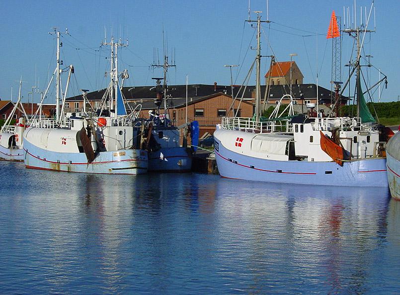 Hvide Sande: Fischereihafen. Dänische Fischkutter sind traditionell blau gestrichen. Im Hintergrund die Stadtkirche.