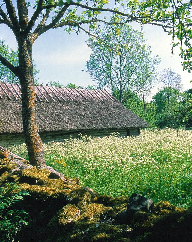 Alte Hofstelle in Koguva auf Muhu