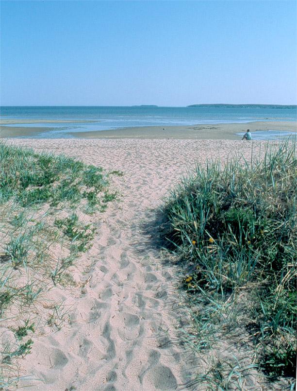 Der Strand von Saaremaa